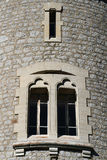 Windows of The Tower of Avalon Stock Image