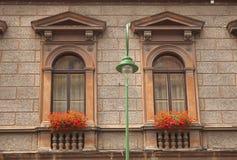 Windows und Blumen Lizenzfreie Stockfotos