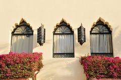 Windows und Lampen auf dem Gebäude mit Blumen im Sommer Konzept für marokkanische und arabische Kultur und Entwurf lizenzfreie stockfotografie