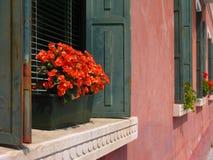 Windows in Venezia Stock Image