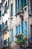 Windows in Venice. Many windows on a wall in Venice Royalty Free Stock Photography