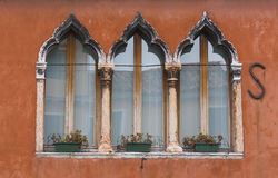 Windows Venice. Window with vases of flowers and brick wall Stock Photos