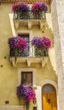 Windows with violet and pink flowers Royalty Free Stock Photos