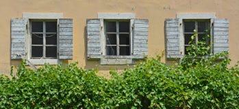 Windows w Budva Obraz Royalty Free