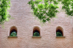 Arched windows in wall. Row of three arched windows in wall with overhanging tree branches Stock Image