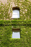 Windows Royalty Free Stock Photos
