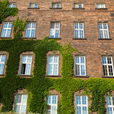 Windows of Wawel Castle in Krakow. Poland Royalty Free Stock Photography
