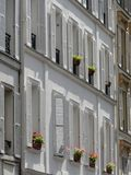 Windows with white shutters Stock Photos