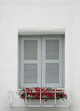 Windows on white wall Royalty Free Stock Photo