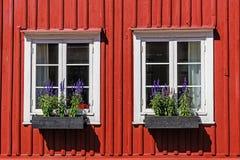 Windows on a wooden facade Royalty Free Stock Image