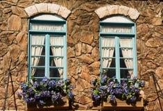 Windows y flores foto de archivo