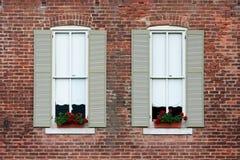 Windows y flores Imagenes de archivo