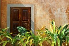 Windows y jardín Fotografía de archivo libre de regalías