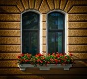Windows z kwiatami Obrazy Royalty Free