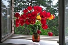 windowsill тюльпанов Стоковая Фотография