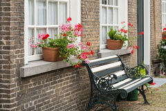 Windowsill with pink and red flowering Pelargonium plants Royalty Free Stock Photo