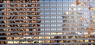 windowsreflection Royalty Free Stock Photography