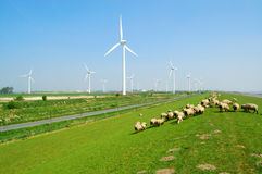 Windpark Stock Images