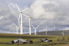 Windpark durch Vieh-Ranch in Washington State Lizenzfreie Stockfotos