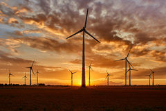Windpark im Sonnenuntergang auf Feld Lizenzfreie Stockfotografie