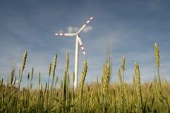 Windpower σταθμός cornfield Στοκ εικόνα με δικαίωμα ελεύθερης χρήσης