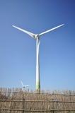 windpower Obrazy Stock