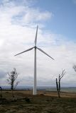 windpower Fotografia Stock
