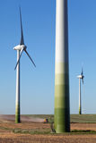 Windpower Green Technology. Windpower park, to produce clean energy with modern green technology royalty free stock image