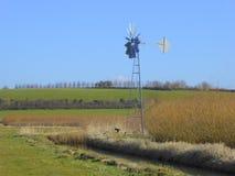 Windpump durch Weidenplantage und -abzugsgraben Stockfotografie