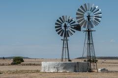 2 windpumps и запруда фермы в зоне Южной Африке Karoo стоковые изображения rf