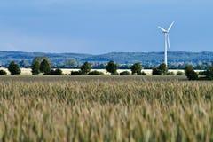 Windrad auf einem Feld Stockbild