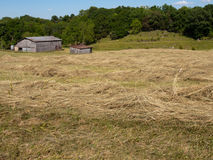 Windrow field barn Royalty Free Stock Image