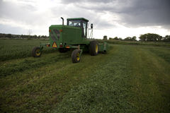 Windrower cutting alfalfa. The back end of the windrower after cutting the alfalfa in the field Stock Images