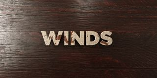 Winds - grungy wooden headline on Maple  - 3D rendered royalty free stock image. This image can be used for an online website banner ad or a print postcard Royalty Free Stock Image