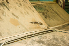 Windscherm op oude roestig Royalty-vrije Stock Foto