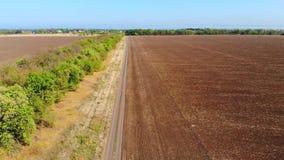 Windschutz zwischen Feldern stock video footage