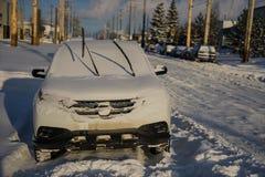 Windschutzscheibenblätter und -schneefälle Lizenzfreie Stockbilder