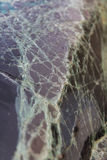 Windshield cracks accident Stock Image