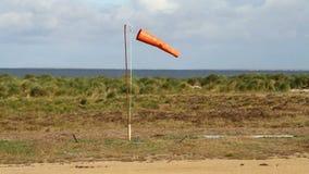 Windsock alaranjado, Falkland Islands vídeos de arquivo