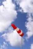 Windsock (vertikal) Lizenzfreie Stockbilder