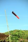 Windsocke in der Dschungelshowwindrichtung Stockbilder