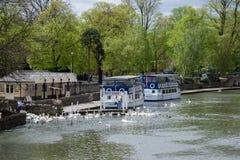WINDSOR BERKSHIRE/UK - APRIL 27: Turist- fartyg som förtöjas på floden Royaltyfri Fotografi