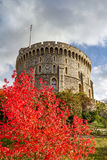 Windsor castle. With autumn leaves Stock Image
