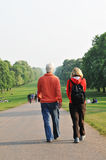 Windsor Great Park royalty free stock photo