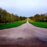 Windsor großer Park Lizenzfreies Stockbild