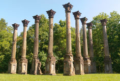 Windsor Ruins. Pillars and forest Stock Photos