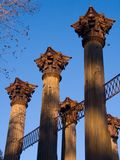 Windsor Ruins Columns. Windsor Ruins, remnants of a Greek revival style antebellum mansion near Lorman, Mississippi Royalty Free Stock Photography