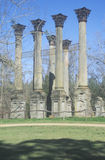 Windsor Ruins are the ruins of the largest antebellum Greek Revival mansion built in the US state of Mississippi, Claiborne County Royalty Free Stock Images
