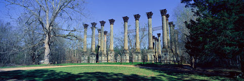 Windsor Ruins are the ruins of the largest antebellum Greek Revival mansion built in the US state of Mississippi, Claiborne County Royalty Free Stock Photography
