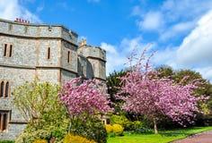 Windsor-Schlosswände im Frühjahr, London-Vororte, Großbritannien stockbilder